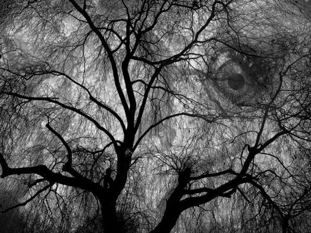 Il buio dentro